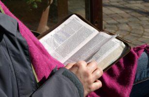 Ungezähmt Und Weit – Die Bibel Neu Entdecken
