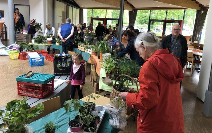 Pflanzenbörse In Wattenscheid-Höntrop War Voller Erfolg