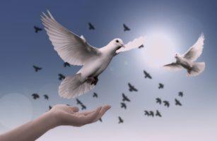 330. Monatliches Friedensgebet Der Kolpingsfamilie Gerthe-Hiltrop-Bergen